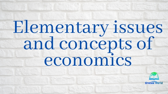 Elementary Issues and Concepts of Economics