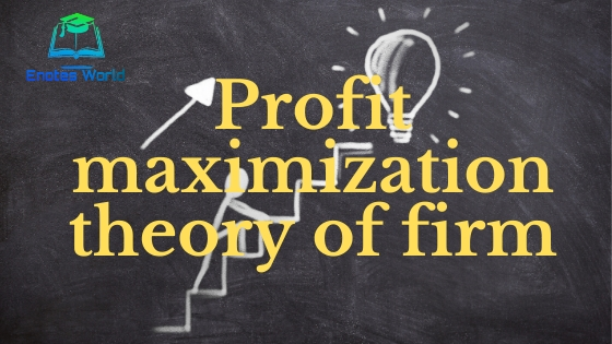 Profit Maximization Theory of the Firm