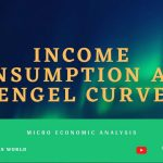Income Consumption and Engel Curve